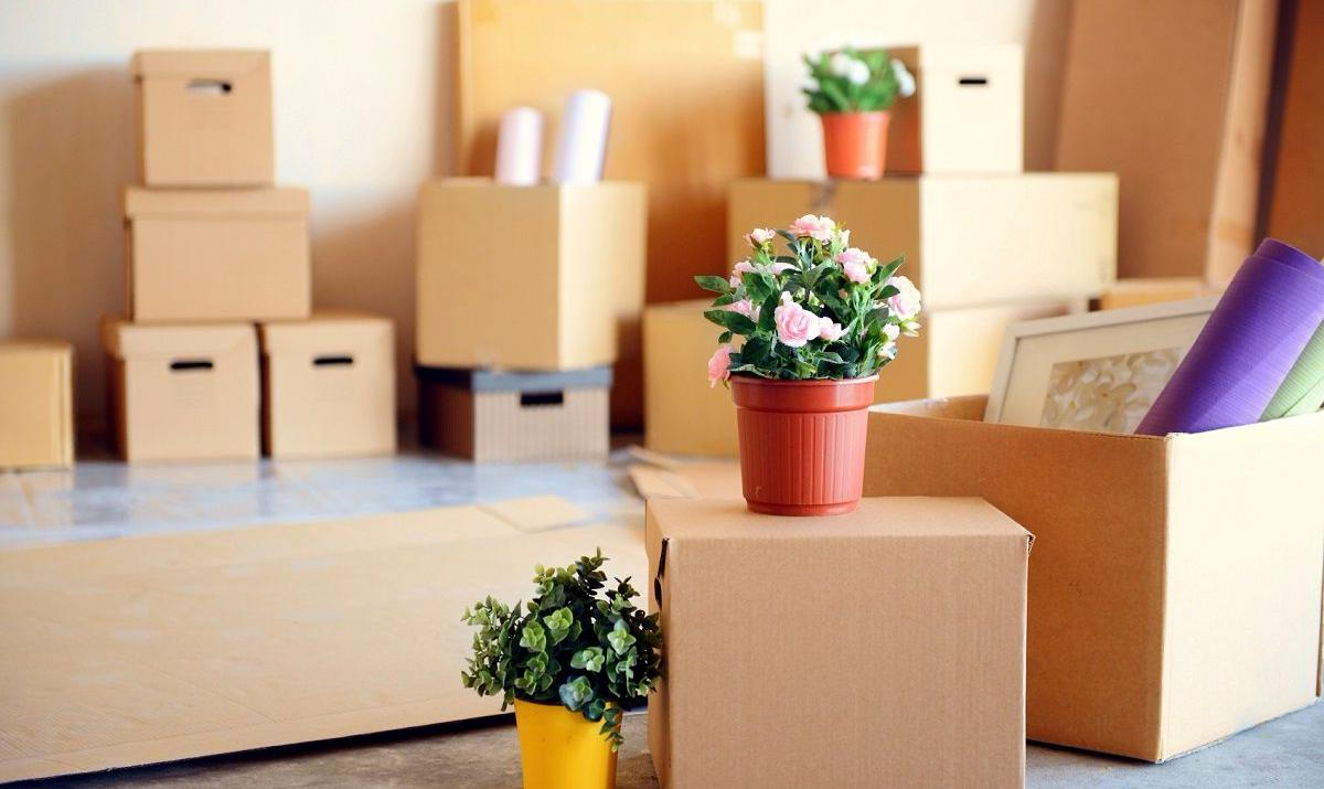 Переезд квартиры со скидкой 20%